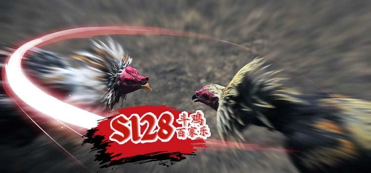 Live S128